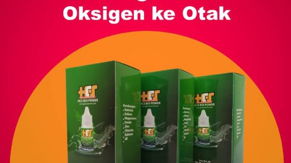 nutrisi otak bio power