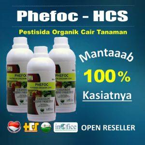 reseller phefoc hcs